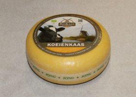 Eko jonge kaas
