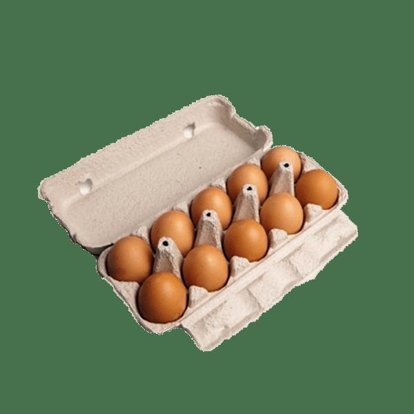 Verse eieren 10 stuks