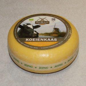 biologische jonge kaas
